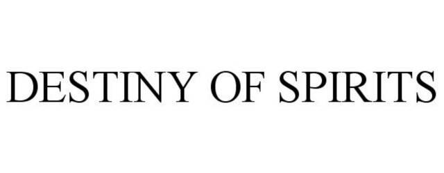 Sony registra Destiny of Spirits
