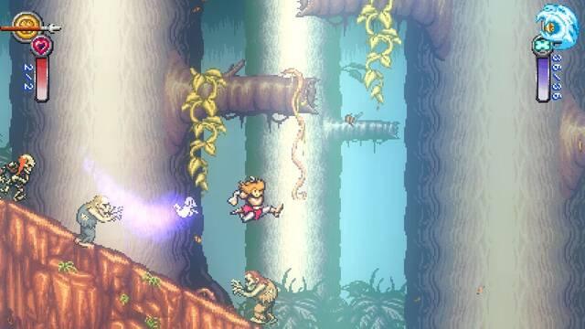 Battle Princess Madelyn puede tener edición física en más plataformas