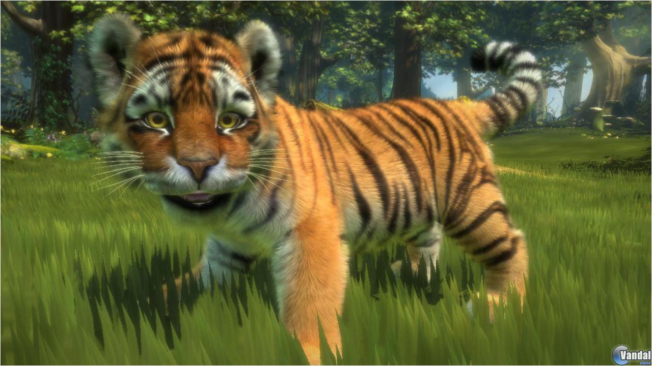 Imagen 9 de Kinectimals para Xbox 360