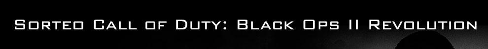 10 Black Ops 2 + 10 DLC + 10 Camisetas