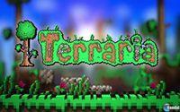 Portada oficial de Terraria PSN para PS3