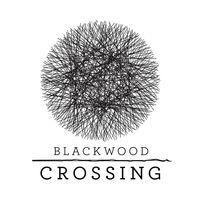 Portada oficial de Blackwood Crossing para PS4