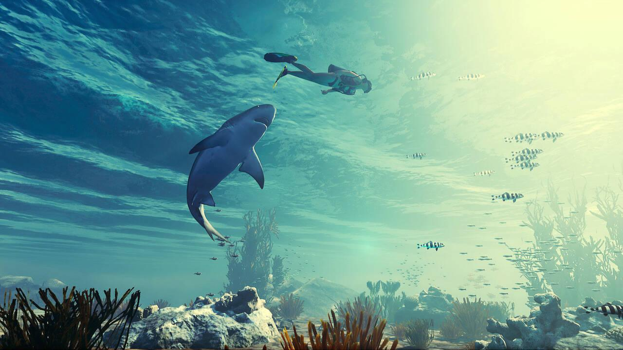 Maneater, el juego del tiburón, tiene fecha de lanzamiento: 22 de ...