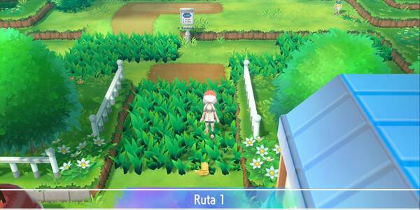 Ruta 1 en Pokémon Let's Go - Pokémon y secretos
