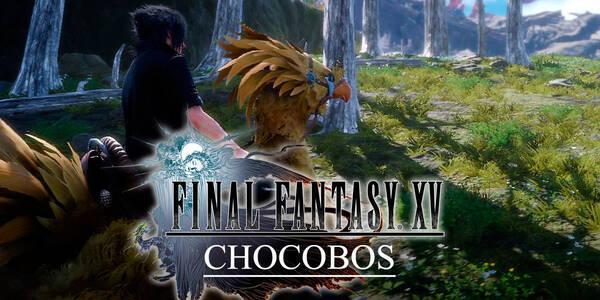 Chocobos en Final Fantasy XV: Todo lo que necesitas saber