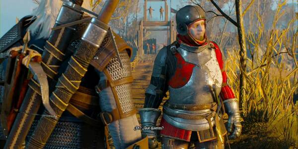 La bestia del bosque - Contrato en The Witcher 3: Wild Hunt