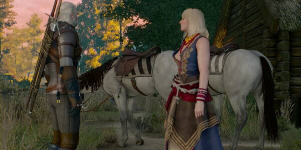 Un favor para un amigo - The Witcher 3: Wild Hunt