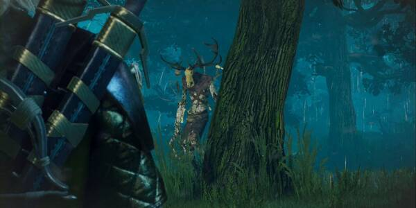El señor del bosque - Contrato en The Witcher 3: Wild Hunt