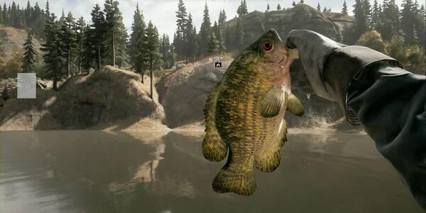 Animales y dónde encontrarlos en Far Cry 5