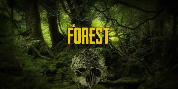 Todo sobre la Historia de The Forest