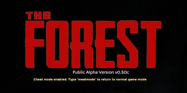 Estos son los Modos de juego de The Forest y lo que ofrecen