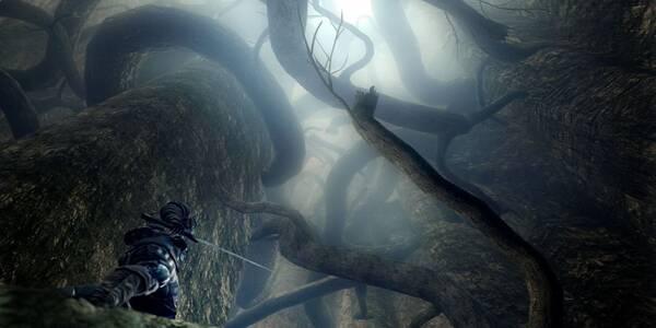 El gran hueco en Dark Souls Remastered al 100%