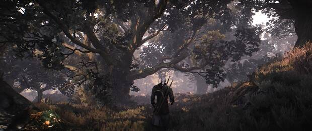 The Witcher 3 luce espectacular gracias al mod Black Unicorn Reshade Imagen 2