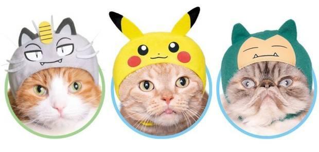 Estos disfraces de Pokémon harán a nuestro gato aún más adorable Imagen 2