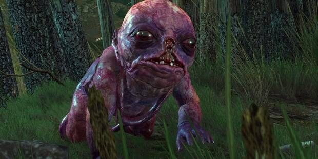 Asuntos familiares - The Witcher 3: Wild Hunt