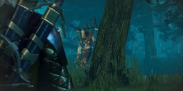 El señor del bosque - Contrato en The Witcher 3: Wild Hunt