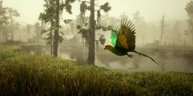 Carolina's Parakeet, which players can learn about in Red Dead Redemption 2