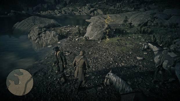 Red Dead Redemption 2 - Sale, perseguido por un orgullo herido: localiza las huellas del oso