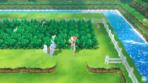 Pokémon Let's Go - Ruta 10: hierba alta