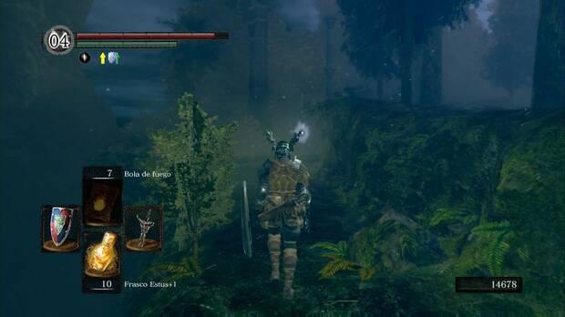 Dark Souls Remastered, Jardín Tenebroso, La puerta de Artorias