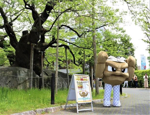 Geodude de Pokémon se convierte en embajador turístico de Japón Imagen 3