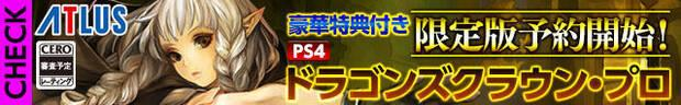 Se filtra Dragon's Crown Pro en PlayStation 4 Imagen 2