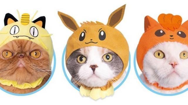 Estos disfraces de Pokémon harán a nuestro gato aún más adorable