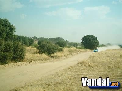 Colin McRae Rally 2005 se presenta en España