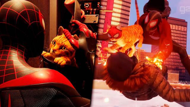 Spider-Man: Miles Morales Spider-Cat gato