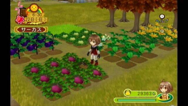 E3: Los nuevos Harvest Moon en imágenes