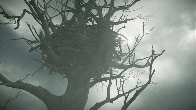 Cuervo en Demon's Souls Remake: quest, objetos, recompensas...