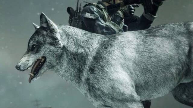 Convierte al perro del multijugador COD: Ghost en un lobo con este descargable