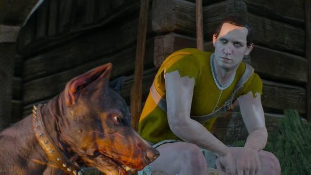 Desaparecido en combate - The Witcher 3: Wild Hunt