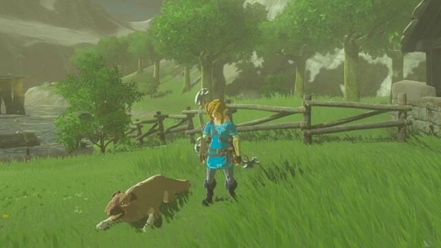 Zelda Breath of the Wild Perros Speedrunning