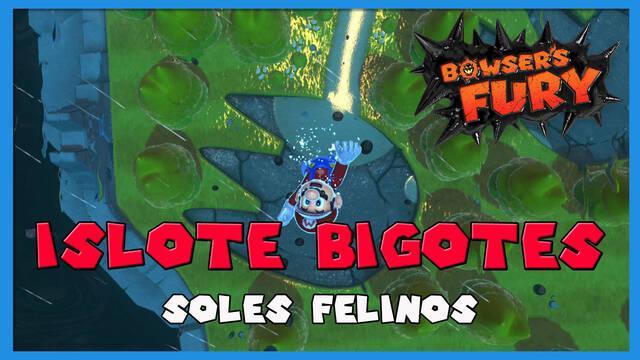 TODOS los Soles felinos de Islote Bigotes en Bowser's Fury