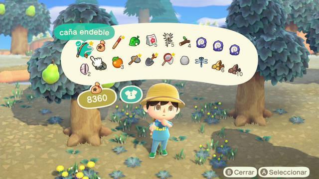 Ampliar el bolsillo de objetos en Animal Crossing: New Horizons