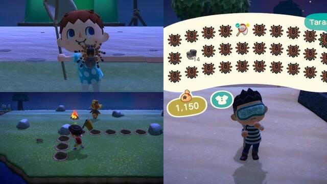 La comunidad de Animal Crossing: New Horizons se une en la caza de la tarántula con laberintos, trampas y exploits