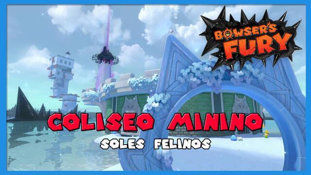TODOS los Soles felinos de Coliseo Minino en Bowser's Fury