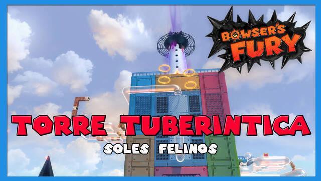 TODOS los Soles felinos de Torre Tuberíntica en Bowser's Fury