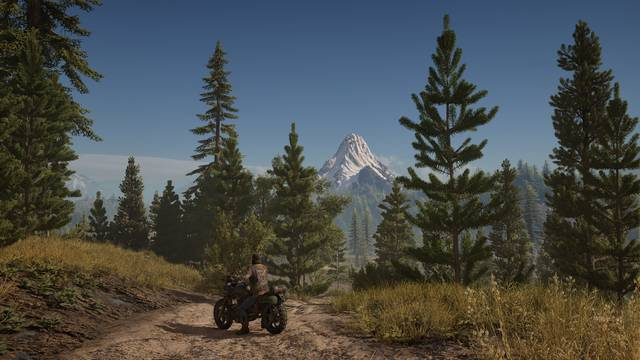 Days Gone se muestra en PlayStation 4 Pro