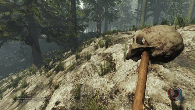 Trucos y comandos de consola de The Forest