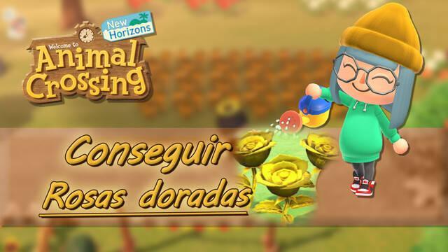 Rosas doradas en Animal Crossing New Horizons: ¿Cómo se consiguen?