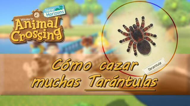 Cazar tarántulas fácilmente en Animal Crossing: New Horizons