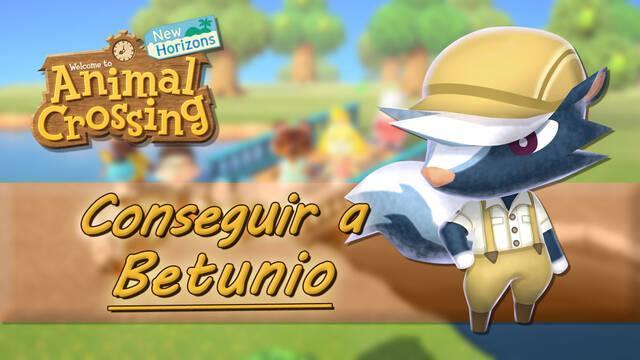 Betunio en Animal Crossing New Horizons: ¿Cómo conseguir que nos visite y qué vende?