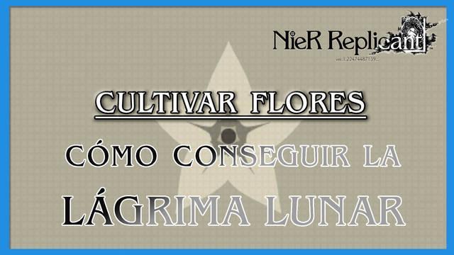 NieR Replicant: cómo cultivar flores y conseguir la Flor legendaria