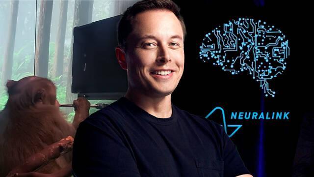Neuralink, de Elon Musk, muestra cómo un mono es capaz de jugar a Pong con su mente.