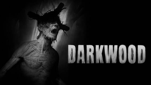 Los creadores del terrorífico Darkwood nos cuentan cómo fue su creación