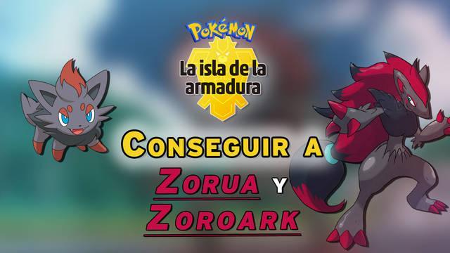Cómo conseguir a Zorua y Zoroark en Pokémon: Isla de la Armadura