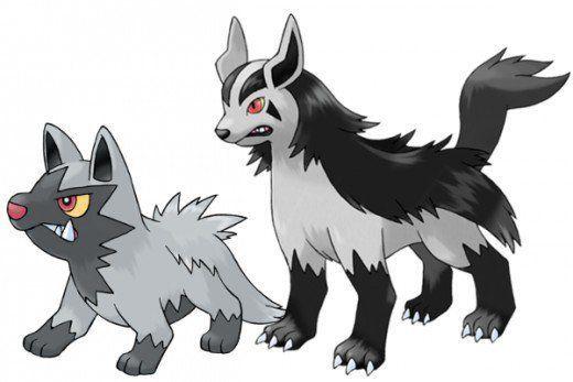 Poochyena y Mightyena Pokémon GO
