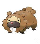 Pokémon GO - Bidoof